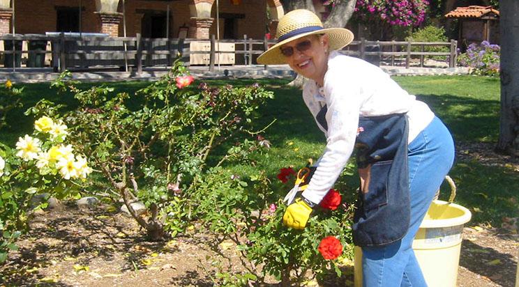 GardeningAngels5