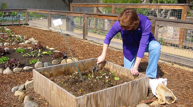 GardeningAngels2