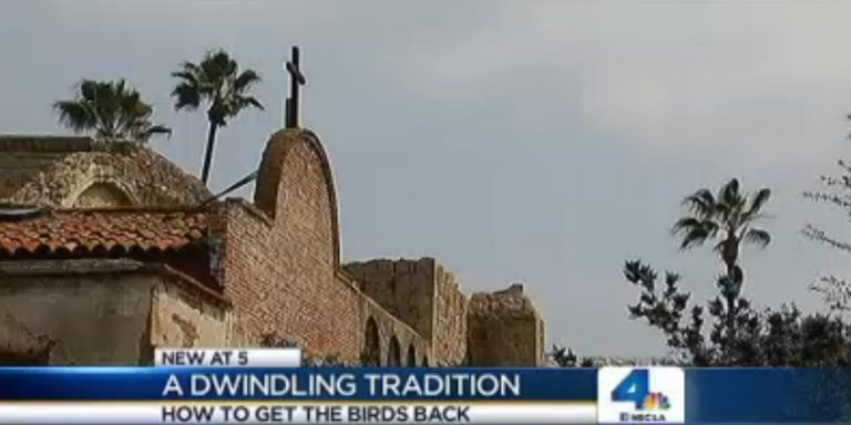 NBC4 Dwindling Tradition