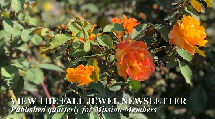 PromotionSlide_JEWELNS-Fall2020