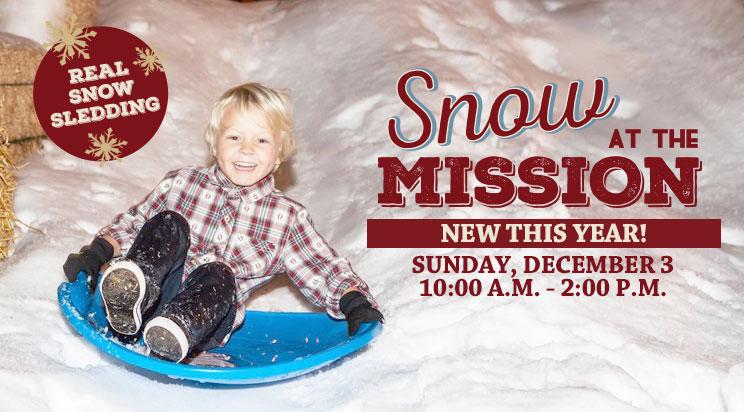 PromotionSlide_SnowattheMission2017